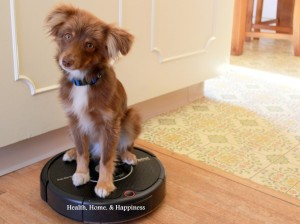 Roomba-Pet-Series-Review-1024x768