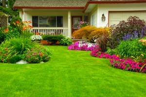 home_improvement_curb_appeal