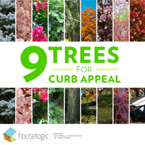 Trees for curb appeal