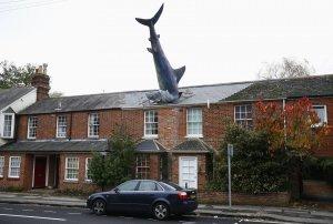 shark-weird-house